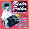 Besta Polka: A Compilation That's Not Lying